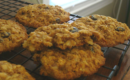 Whole Wheat Oatmeal Raisin Cookies | Hottie Biscotti