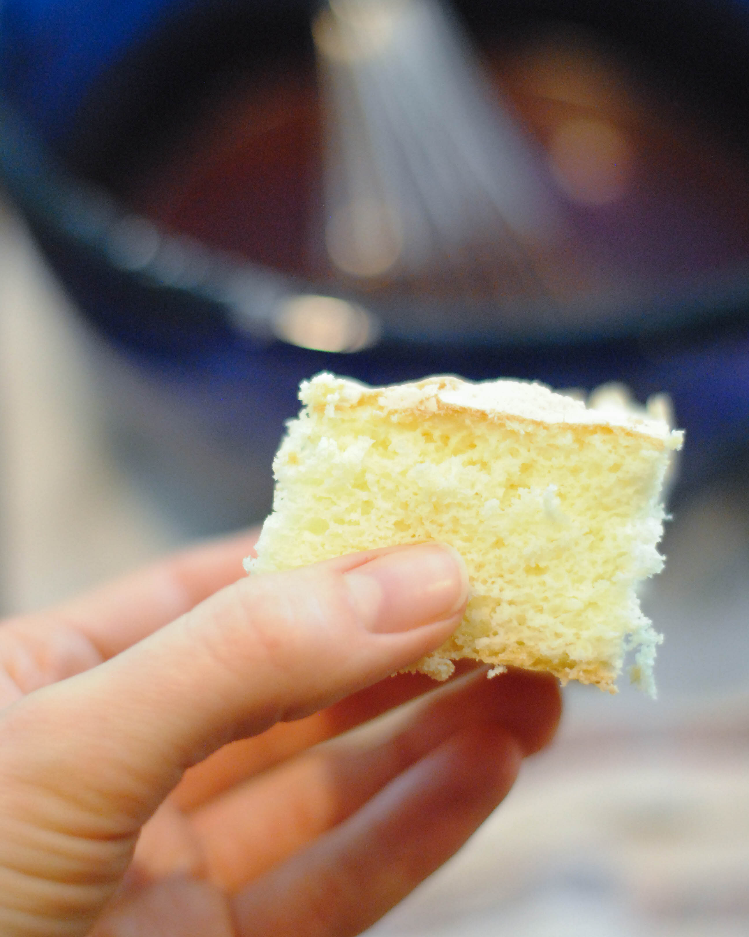 Lamingtons-2